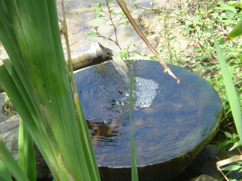 給水ホース ヘドロ洗浄&整備      in  うみべの森_c0108460_22472142.jpg