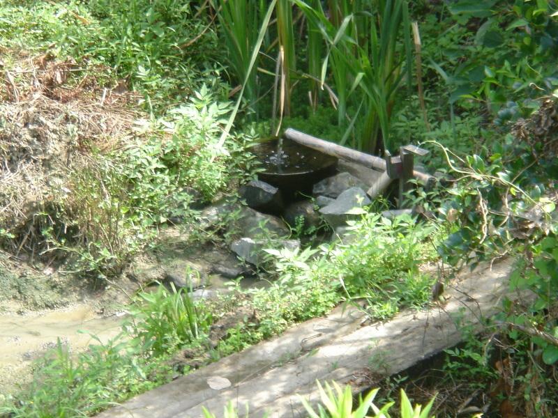 給水ホース ヘドロ洗浄&整備      in  うみべの森_c0108460_22472283.jpg