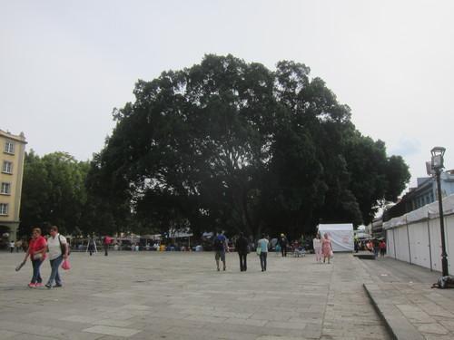 Mexico-20._c0153966_10334367.jpg