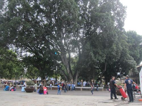 Mexico-20._c0153966_103432100.jpg