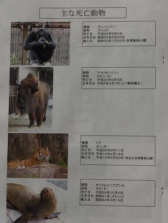 動物園のつどい_e0272869_10455341.jpg
