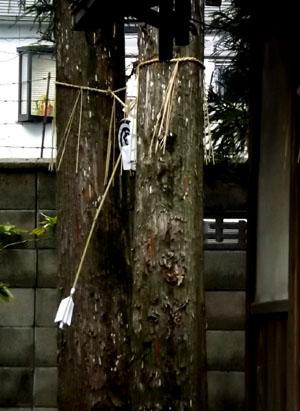 剣神社 お弓始め祭と厄除け火焚き祭_e0048413_21115599.jpg
