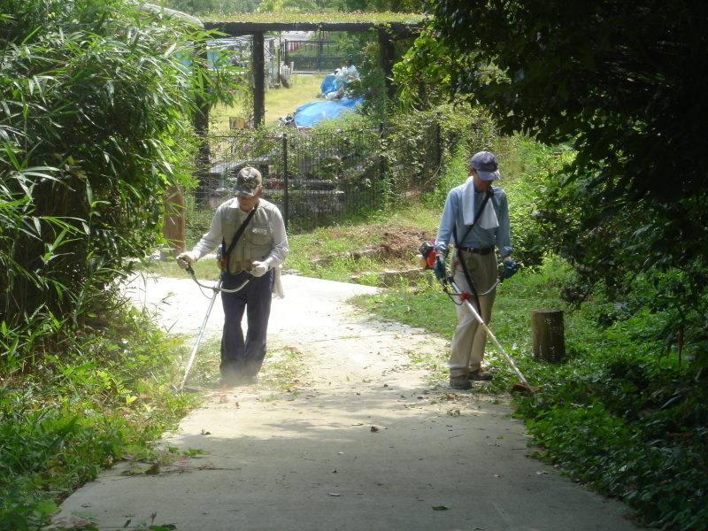 草刈りに頑張っています  in  うみべの森_c0108460_22231187.jpg
