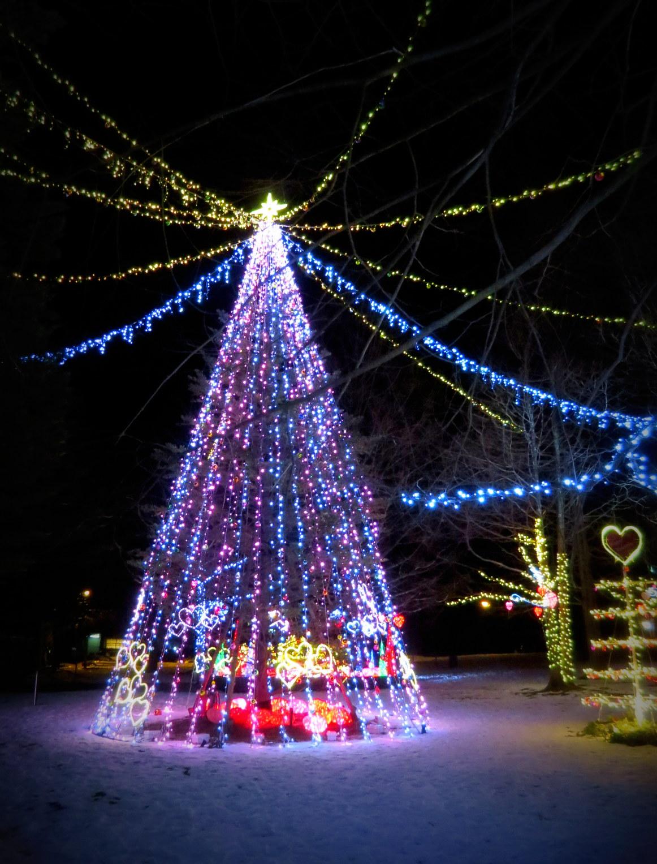 2015軽井沢・冬ものがたり☆Valentine in 軽井沢_f0236260_181708.jpg
