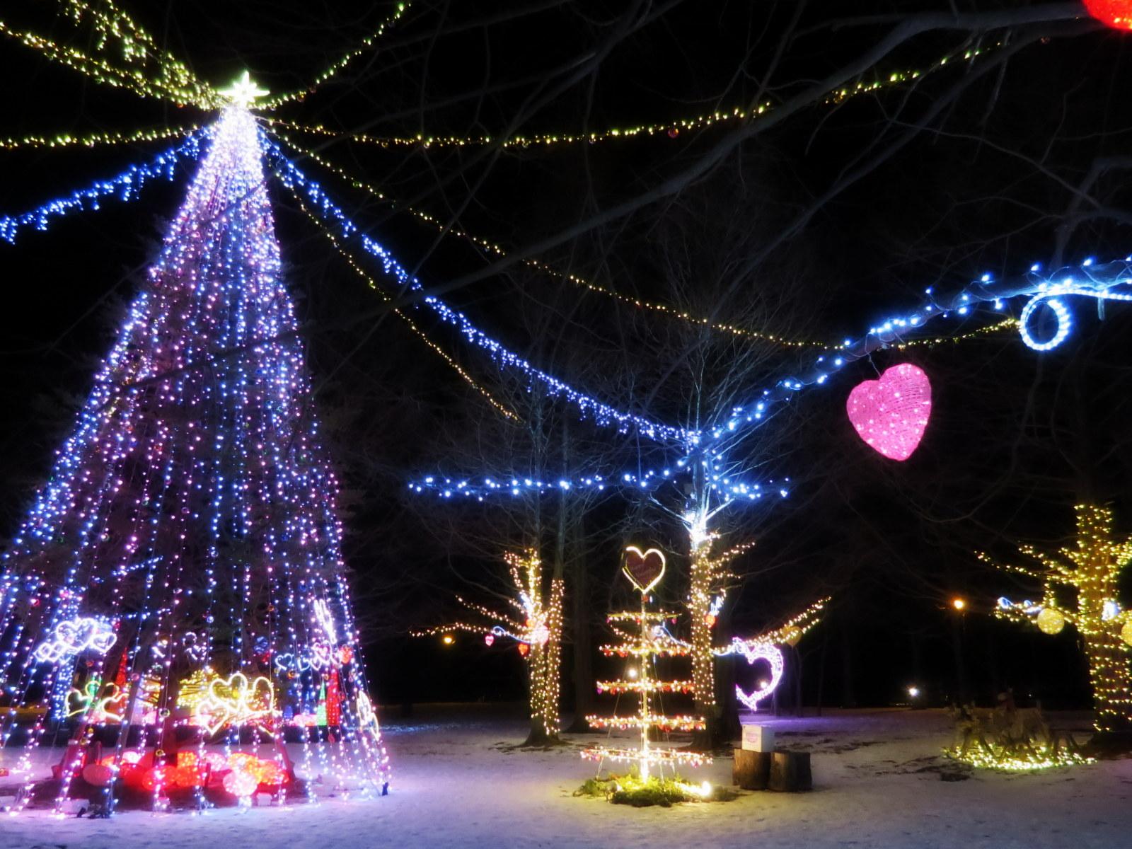 2015軽井沢・冬ものがたり☆Valentine in 軽井沢_f0236260_18173044.jpg