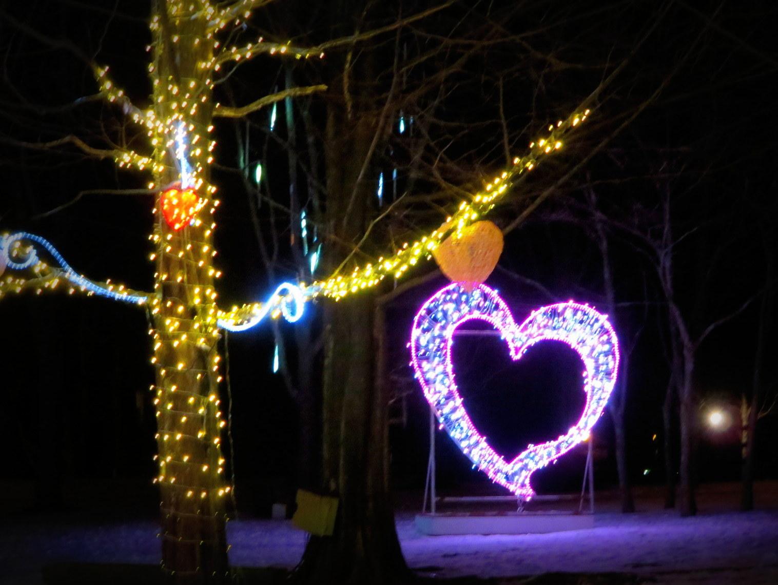 2015軽井沢・冬ものがたり☆Valentine in 軽井沢_f0236260_18174381.jpg