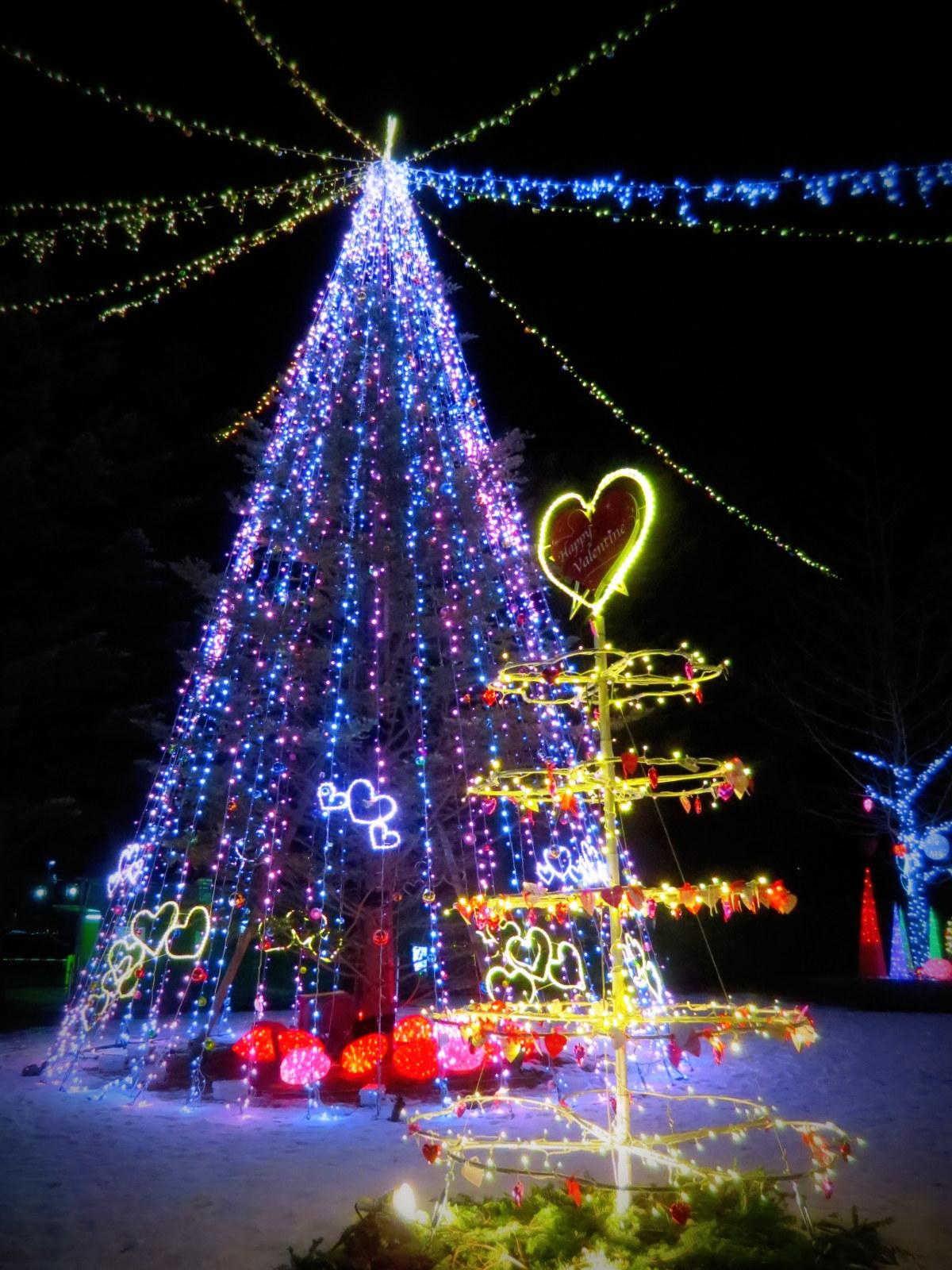 2015軽井沢・冬ものがたり☆Valentine in 軽井沢_f0236260_18181330.jpg