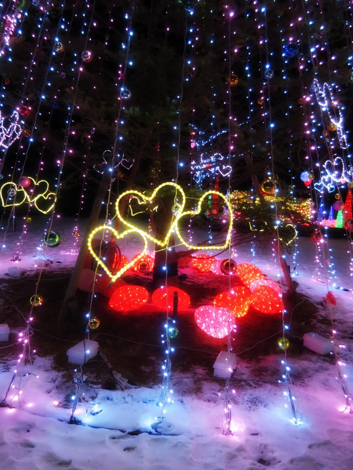 2015軽井沢・冬ものがたり☆Valentine in 軽井沢_f0236260_18182884.jpg