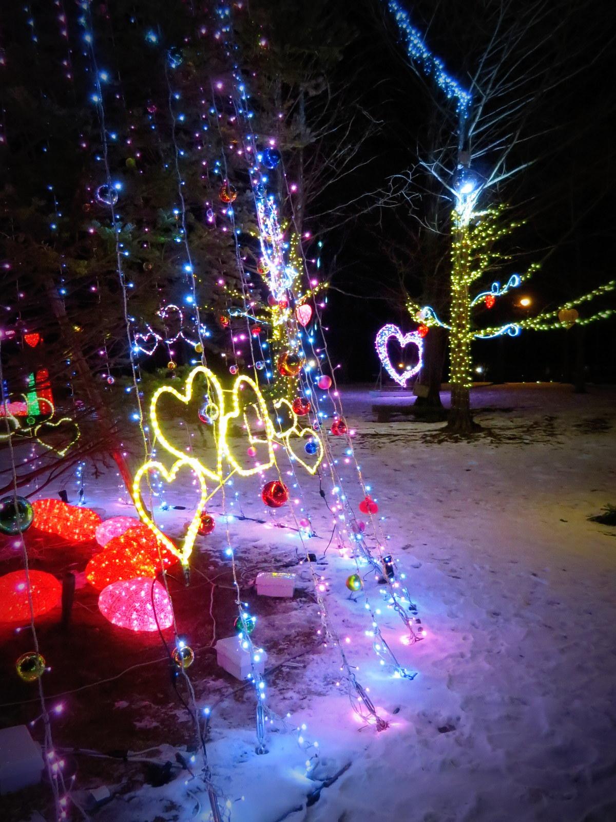 2015軽井沢・冬ものがたり☆Valentine in 軽井沢_f0236260_18183749.jpg