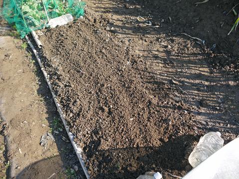 タマネギ、キャベツなどの草取りと追い肥(2・9~10)_c0014967_19423686.jpg
