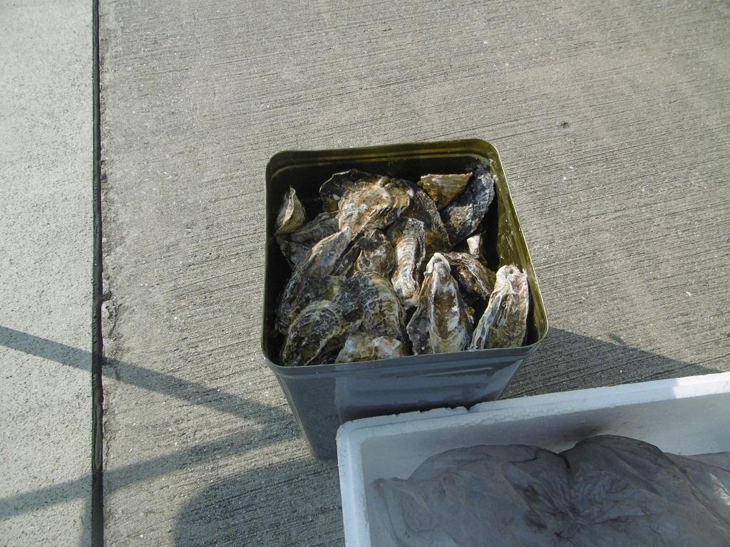 牡蠣ずくしのパーティー_f0205367_22424680.jpg