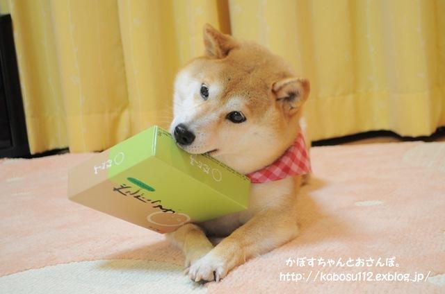 お土産_a0126590_08504994.jpg