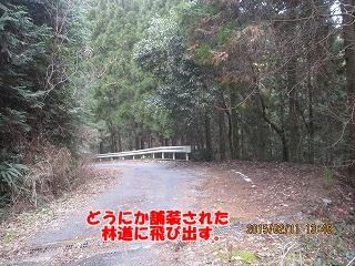 f0193521_843994.jpg
