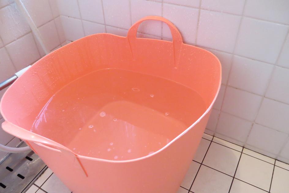 初めての温浴。_b0107163_01335921.jpg