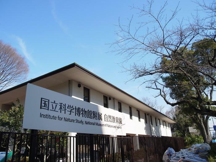 国立科学博物館附属 自然教育園_e0276411_21314143.jpg