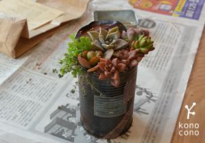 手づくり部♪ 多肉植物の寄せ植えをしましたー♪_f0321908_17431319.jpg