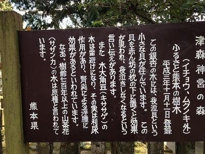 津森神宮_b0228113_16363209.jpg