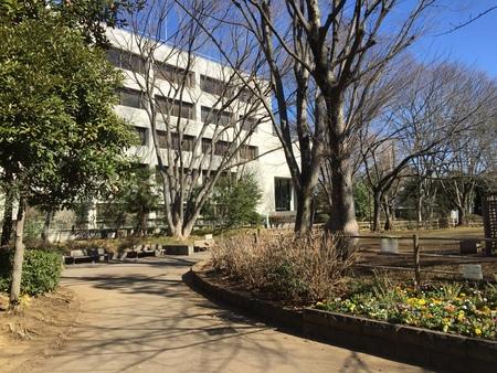 東京都立中央図書館_b0074416_1539268.jpg