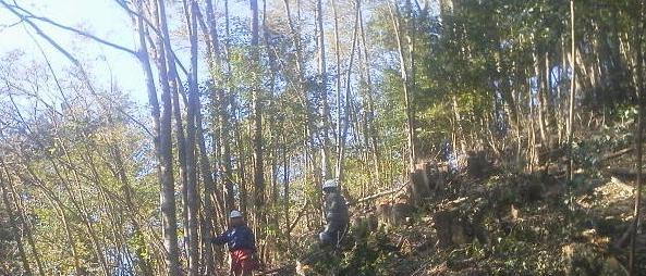 26・NPV活動フィールド/茂平の森Ⅱ/岡林山_a0051539_2005319.jpg