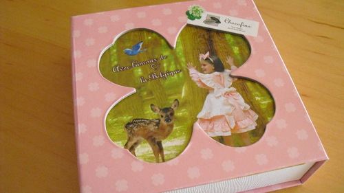 Chocofino(チョコフィーノ) 『チョコブック』_a0326295_10284449.jpg