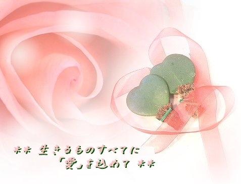 f0176499_03362675.jpg