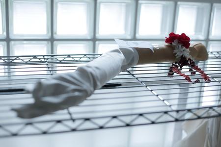 アームレットとプリザーブドブーケ 真紅のドレスに白のバラで ホテル日航東京様へ_a0042928_17501561.jpg
