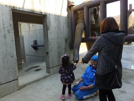 動物園での年中行事 _e0272869_14311011.jpg