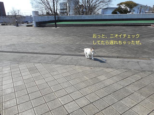 c0179472_1831103.jpg