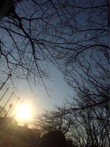 早朝ラン_d0118072_824112.jpg