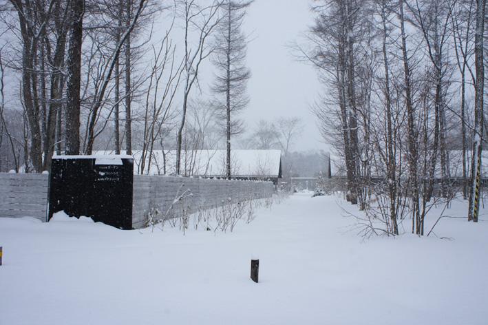 冬の嵐_f0160407_4533232.jpg