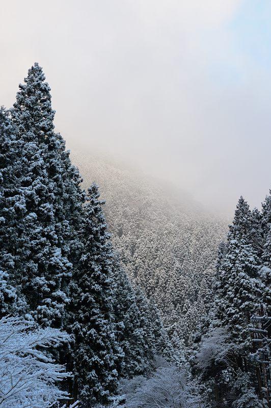 2015京の雪景色@貴船 其の一_f0032011_19545250.jpg