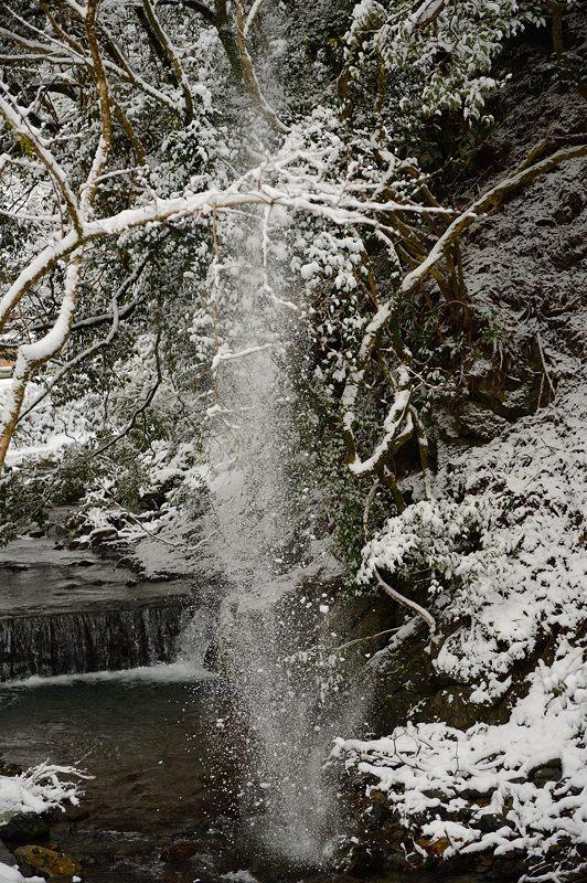 2015京の雪景色@貴船 其の一_f0032011_19594164.jpg