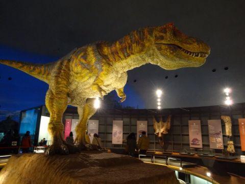 福井恐竜博物館_f0170422_9544629.jpg