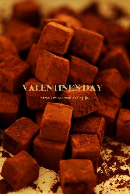 今年のバレンタインは・・・。_d0173942_20302243.jpg