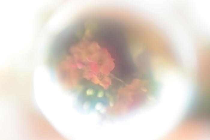 c0246290_17505948.jpg
