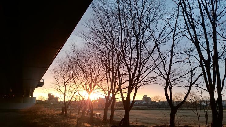 夜明けのホームグランド_b0134499_436791.jpg