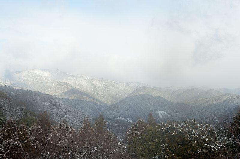 2015京の雪景色@嵐山モンキーパーク岩田山 「雪猿」・其の二_f0032011_19542155.jpg
