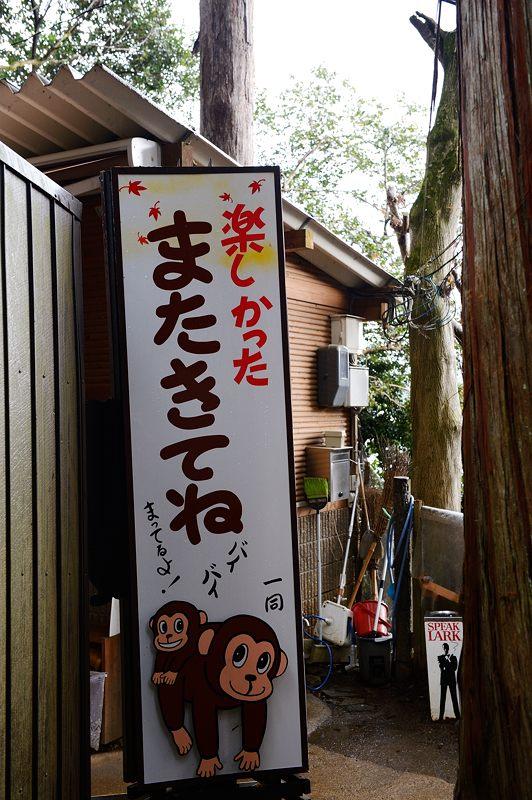 2015京の雪景色@嵐山モンキーパーク岩田山 「雪猿」・其の二_f0032011_19543590.jpg