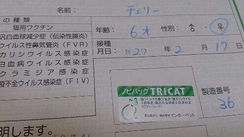 f0220919_1101513.jpg