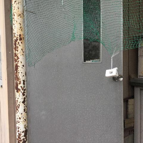 ドア交換とレディス部隊_f0031037_1811450.jpg