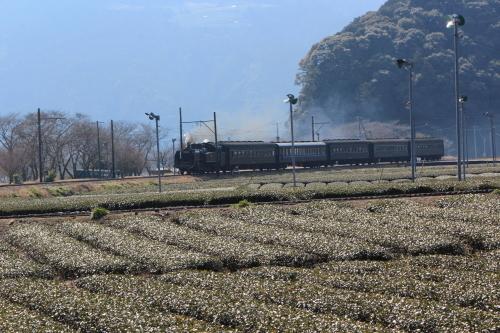 SL列車_d0285540_21351127.jpg