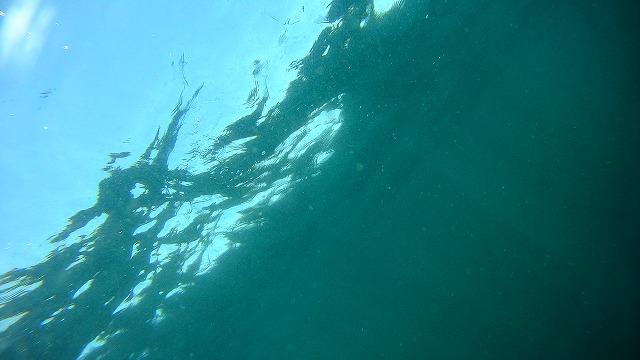 0217  波佐間人工魚礁(2)_b0075059_1341514.jpg