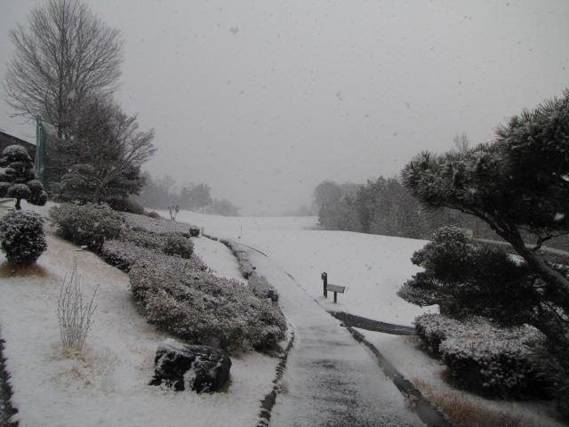 本日(2/17)は降雪によりクローズです_f0096067_8275330.jpg