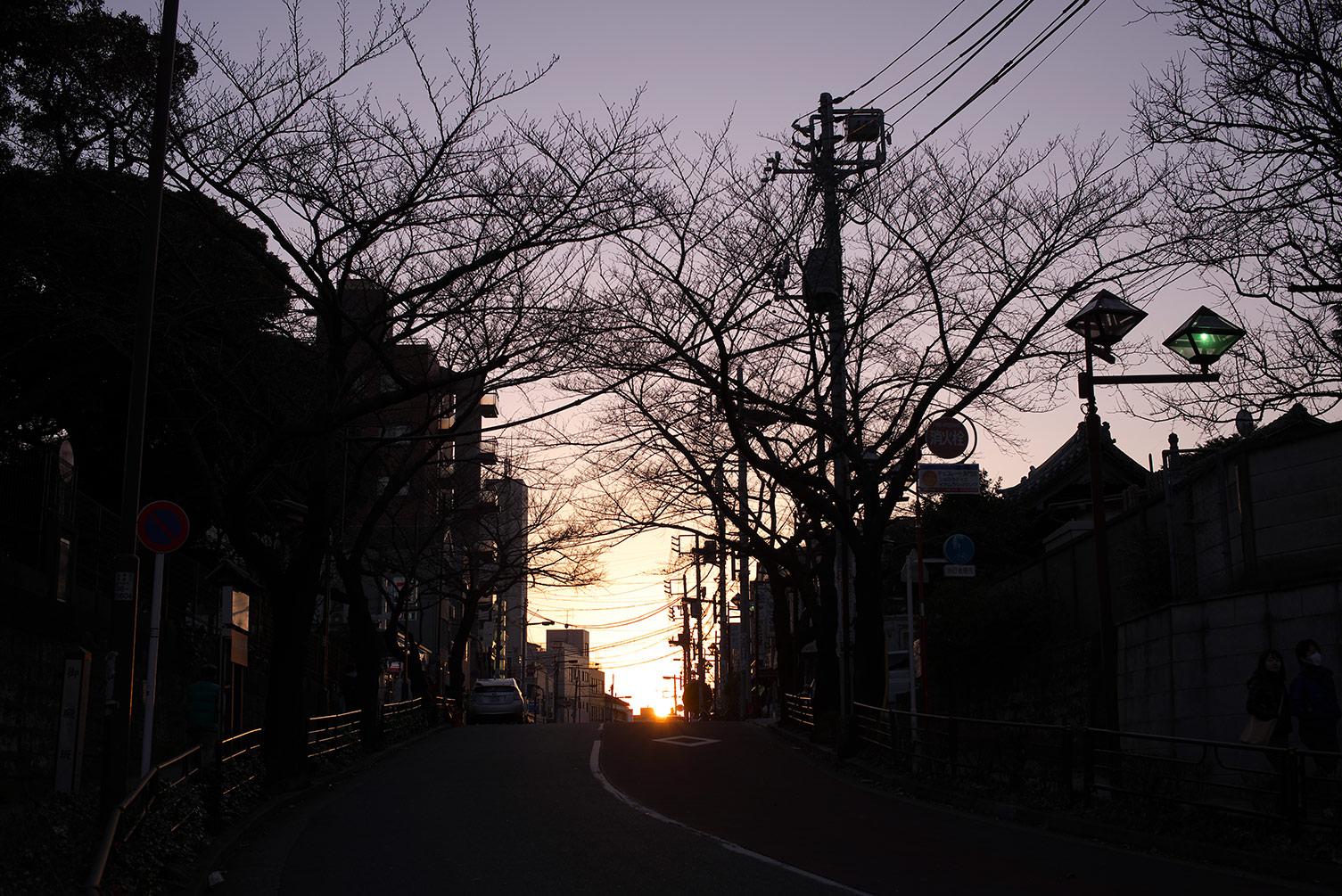 夕暮れの坂道_f0121181_1451445.jpg