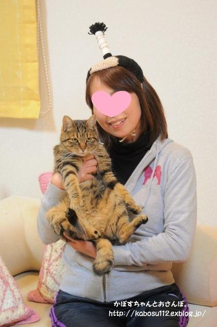 猫ぐらし_a0126590_23034146.jpg