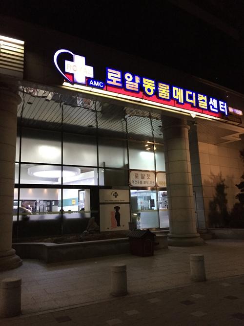 第2回韓国研修 その2_d0156734_11281151.jpg