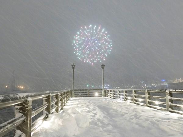 降る雪と咲く花の間_d0179447_20361317.jpg