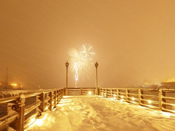 降る雪と咲く花の間_d0179447_20361715.jpg