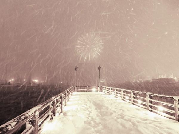 降る雪と咲く花の間_d0179447_20362336.jpg
