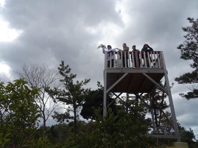 カロリナクラブ例会  in  孝子の森     by     (TATE-misaki)_c0108460_21134301.jpg